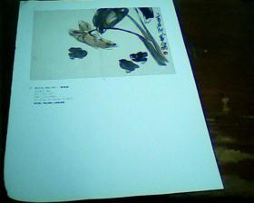 杂志美术画页 正面 齐白石  缑鸡图  黄宾虹  背面  缥缃祥云