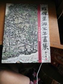 当代中国画精品集程辉星湖写生画集林风俗题书名