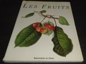 2手法文 Les Fruits 水果绘画 左上角褶皱 xkd20