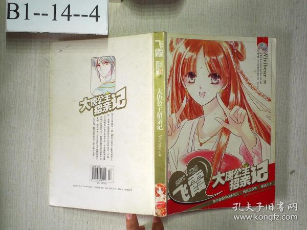 飞霞 2008 大唐公主招亲记