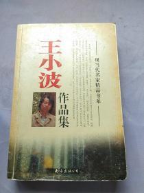王小波作品集。