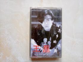 磁带253 王磊--异乡的走廊