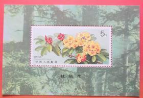 T162 杜鹃花邮票小型张 全品原胶