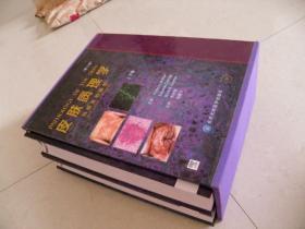 皮肤病理学(上下卷)(第3版)附2张光盘
