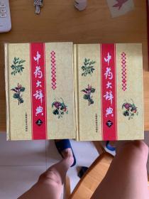 中藥大辭典(全兩冊)