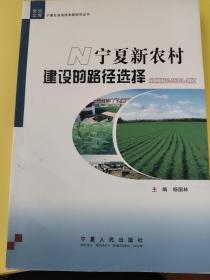 宁夏新农村建设的路径选择