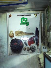 目击者丛书 自然博物馆 鸟。