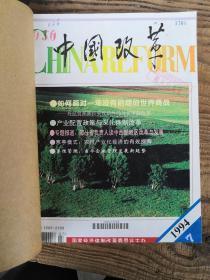 中国改革 1994年7-12期95年1-6期2本合售