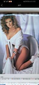 1993性感美女挂历,双月
