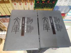 湖湘文库--王之春集(一、二)