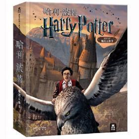 乐乐趣儿童翻翻书 哈利波特立体书 精装珍藏版 大型经典3D立体Harry Potter中文手工书 立体绘本魔法书故事书 小学生儿童礼品