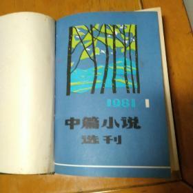 中篇小说选刊1981年1,2,3期,含创刊号