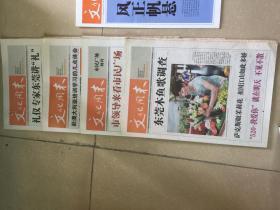 报纸:文化周末报系列