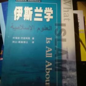 伊斯兰文化小丛书:伊斯兰文学