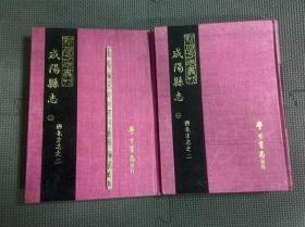 咸阳县志 全两册 精装 学生书局