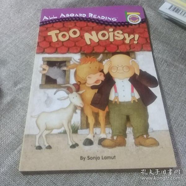 TooNoisy!