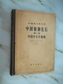 中国各门类化石 中国植物化石 第二册 中国中生代植物《45827》