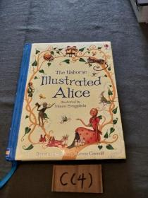 Illustrated Alice (Padded Hardback)[爱丽丝梦游仙境]