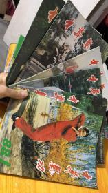 中华气功1988年第1.2.3.5.6期【5本合售】