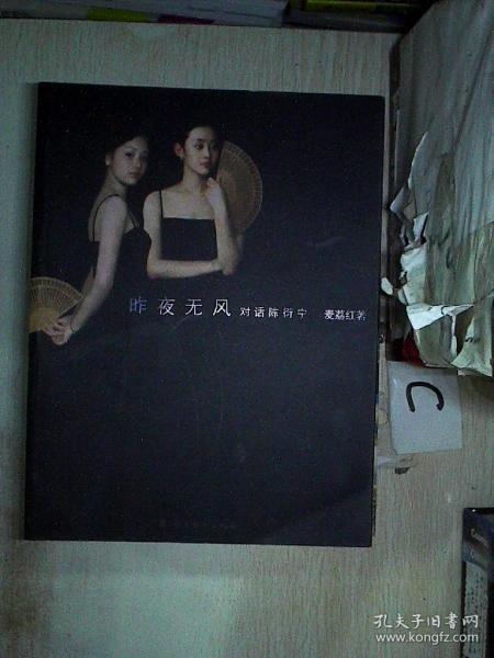昨夜无风:对话陈衍宁