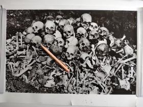 大幅日军屠杀骸骨照片