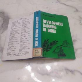 DEVELOPMENT BANKING IN INDIA  印度的发展银行业    精装本