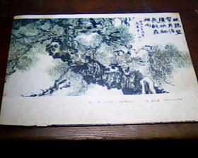 16开杂志画页  柏树