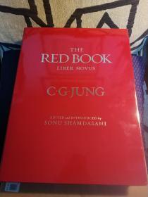 The Red Book:Liber Novus