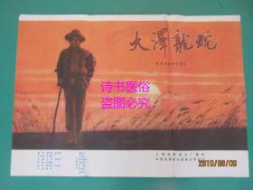 电影海报:大泽龙蛇(105*74cm)