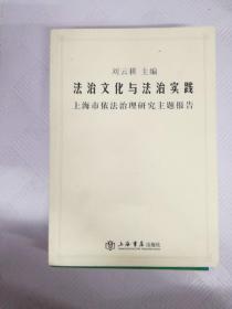 LA4005721 法治文化与法治实践 上海市依法治理 研究主题报告