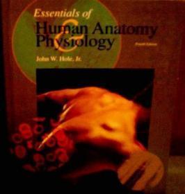 Essentials of Human Anatomy Physiology-人体解剖生理学基础