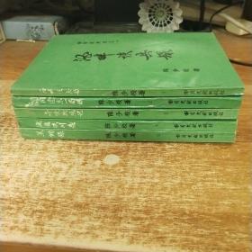 金陵残照记(全五册)