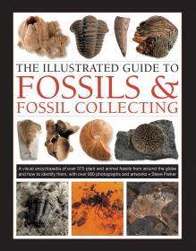 The Illustrated Guide to Fossils & Fossil Collecting化石指南