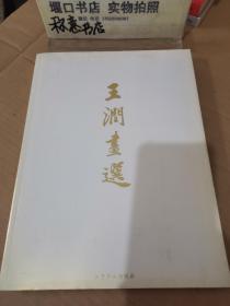 王润画选【 签名本】