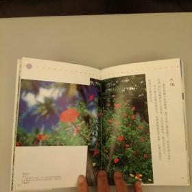 观赏植物的传说      2050.8.19