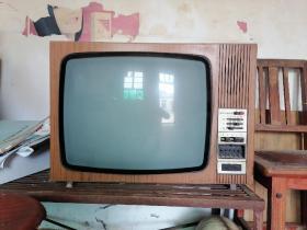 六七十年代,木壳波兰产NEPTUN625黑白电视机。