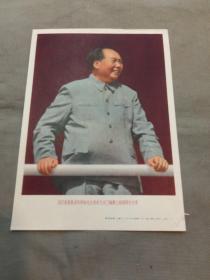 宣传画:我们最最敬爱的领袖毛主席在天安门城楼上检阅游行大军( 上海人民美术出版社)