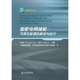 智能电网储能:可再生能源的规划与运行