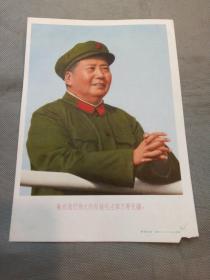 宣传画:敬祝我们的伟大领袖毛主席万寿无疆( 上海人民美术出版社)