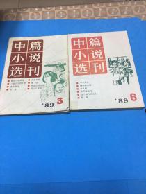 中篇小说选刊1989年第3、6期
