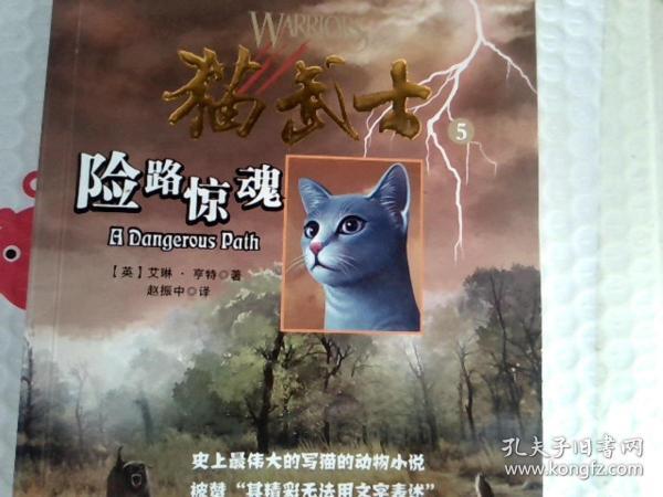 猫武士5-险路惊魂