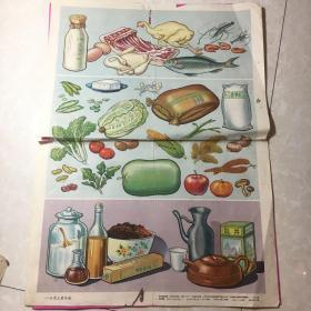 1955年幼儿常识挂图—-日常主要食物(新亚书店出版)