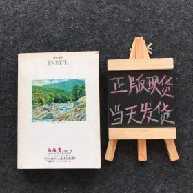 艺术家 林耀生 1996 2