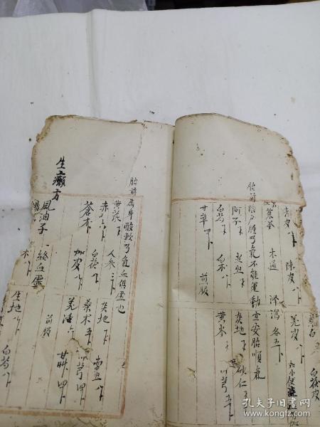 手抄中医书  药方(53面)