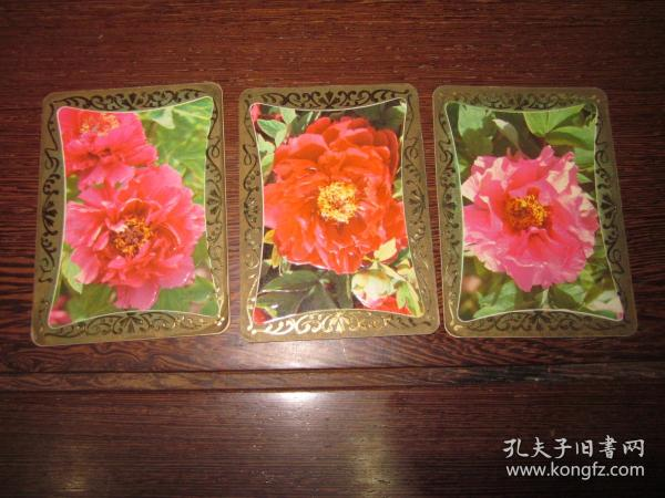 1983年历卡3张——茶花