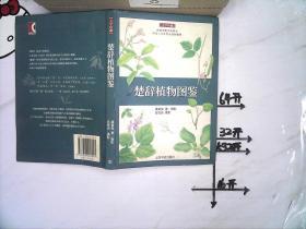 楚辞植物图鉴