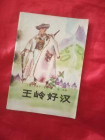 王岭好汉    广西人民出版社