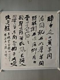 张东明书法精品