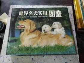 世界名犬实用图鉴