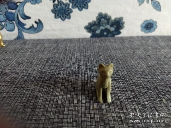 俗名:玉色狐貓